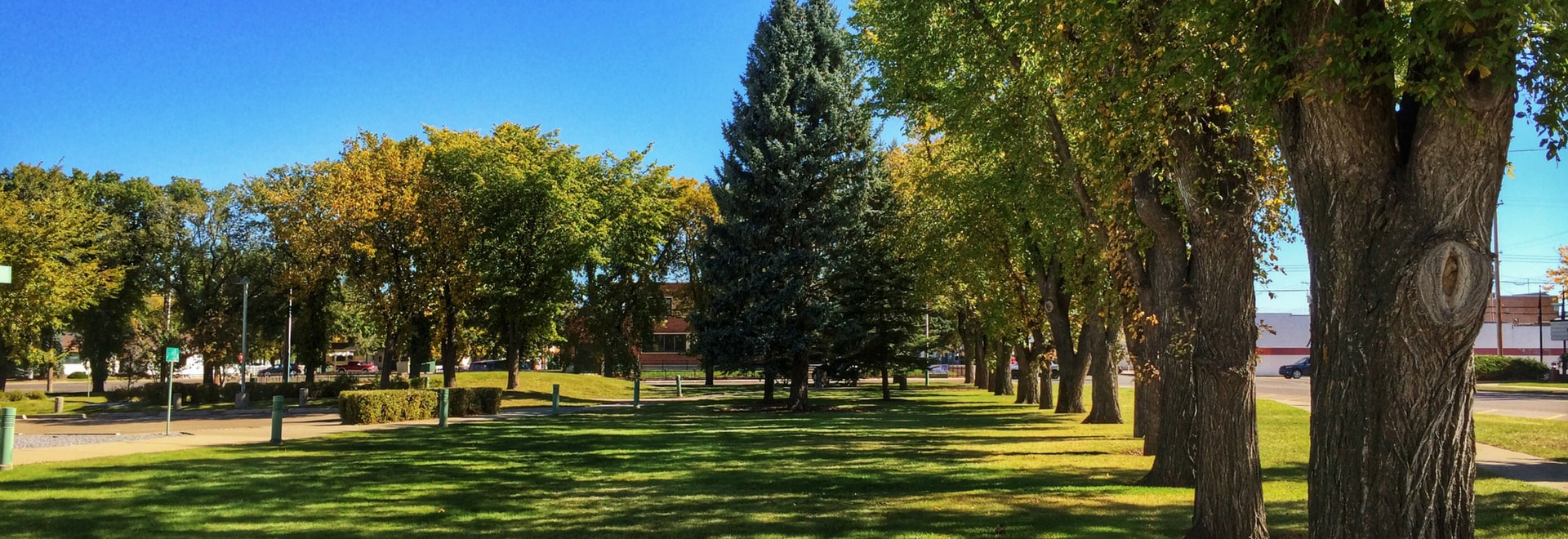 green park in Taber