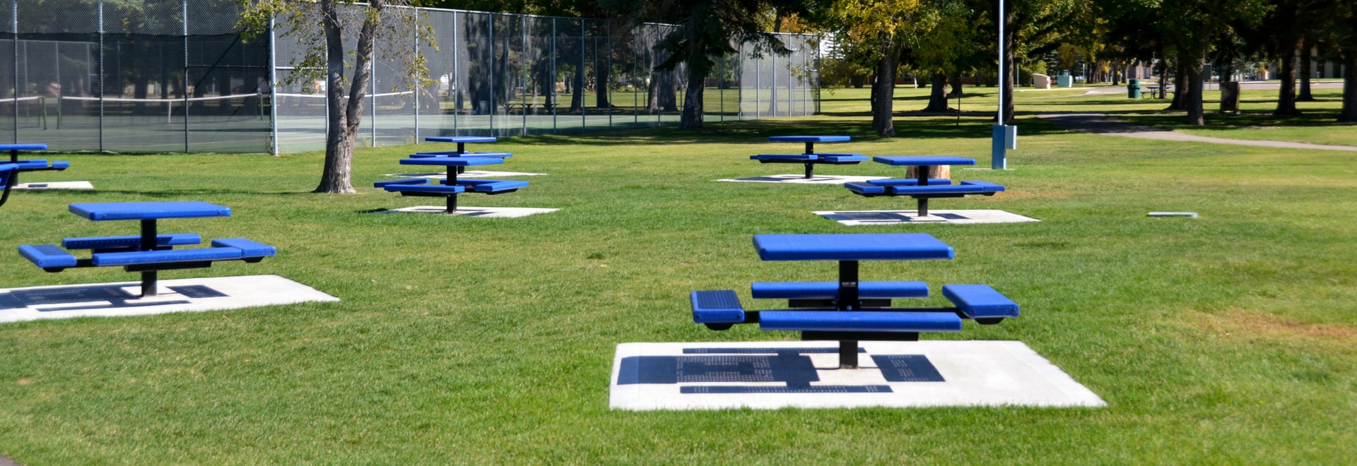 picnic tables in the park
