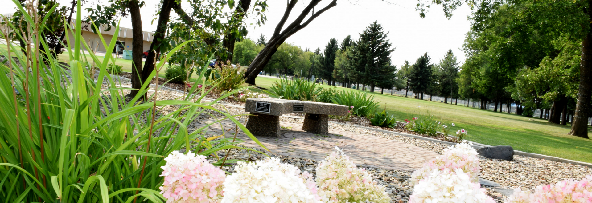 Confederation Park Bench
